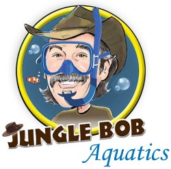 Jungle Bob Aquatics
