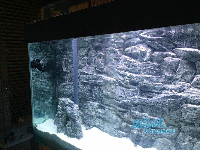 aquarium background for juwel aquarium rio 300 3d rock. Black Bedroom Furniture Sets. Home Design Ideas